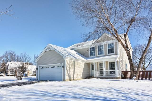 225 Concord Avenue, South Elgin, IL 60177 (MLS #10637768) :: Helen Oliveri Real Estate