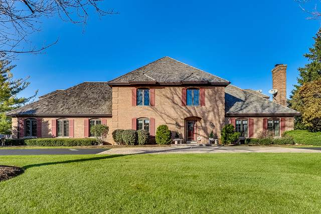 20805 N Meadow Lane, Deer Park, IL 60010 (MLS #10638010) :: Ani Real Estate
