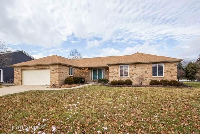 213 Deerhaven Drive, Minooka, IL 60447 (MLS #10638166) :: Suburban Life Realty