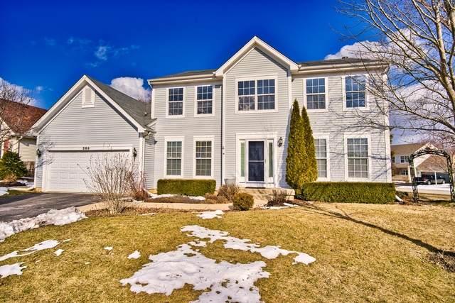 569 Charlton Court, Lake Villa, IL 60046 (MLS #10638195) :: Lewke Partners