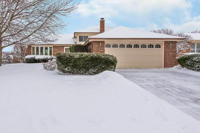 6755 Meade Road, Downers Grove, IL 60516 (MLS #10638390) :: Ryan Dallas Real Estate