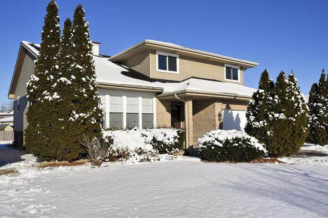 3638 W Deer Park Drive, Alsip, IL 60803 (MLS #10638410) :: Touchstone Group
