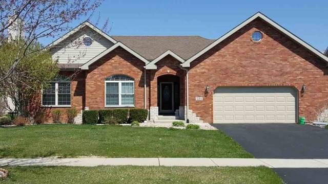 231 Pine Street, Beecher, IL 60401 (MLS #10638585) :: RE/MAX IMPACT