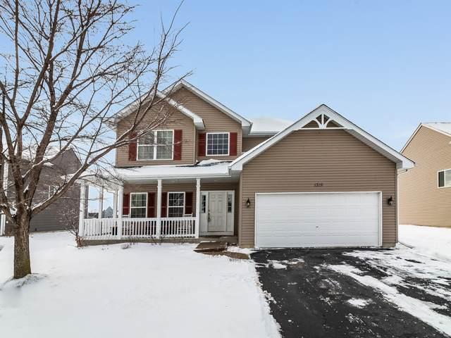 1319 Riverhaven Trail, Joliet, IL 60431 (MLS #10638665) :: Helen Oliveri Real Estate