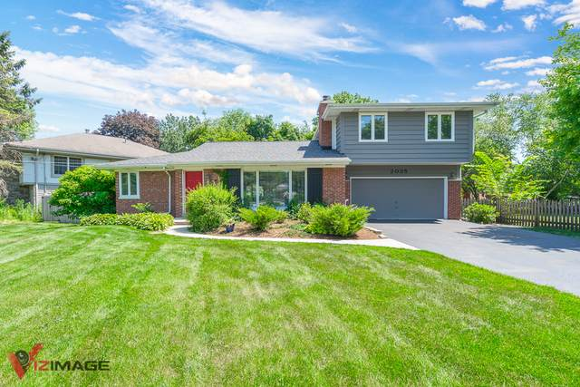 2035 Glencoe Street, Wheaton, IL 60187 (MLS #10638842) :: Ryan Dallas Real Estate