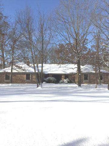 954 N Butternut Circle, Frankfort, IL 60423 (MLS #10639010) :: Touchstone Group