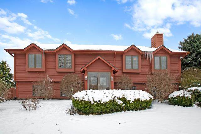 12916 W Baker Road, Manhattan, IL 60442 (MLS #10639267) :: The Wexler Group at Keller Williams Preferred Realty