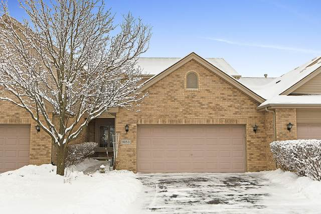 9053 Newcastle Court, Tinley Park, IL 60487 (MLS #10639357) :: Century 21 Affiliated