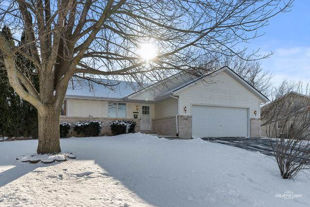 1524 James Court, Belvidere, IL 61008 (MLS #10639371) :: Suburban Life Realty