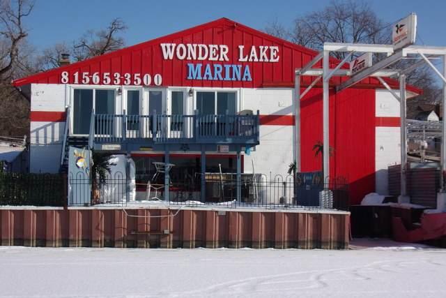 4019 Lake Shore Drive, Wonder Lake, IL 60097 (MLS #10639381) :: Ani Real Estate