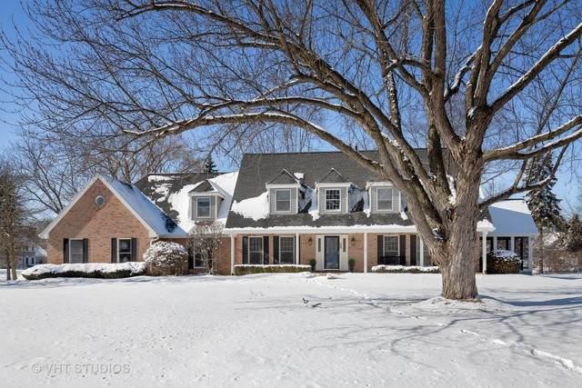 28 Clover Lane, Deer Park, IL 60010 (MLS #10639391) :: Suburban Life Realty