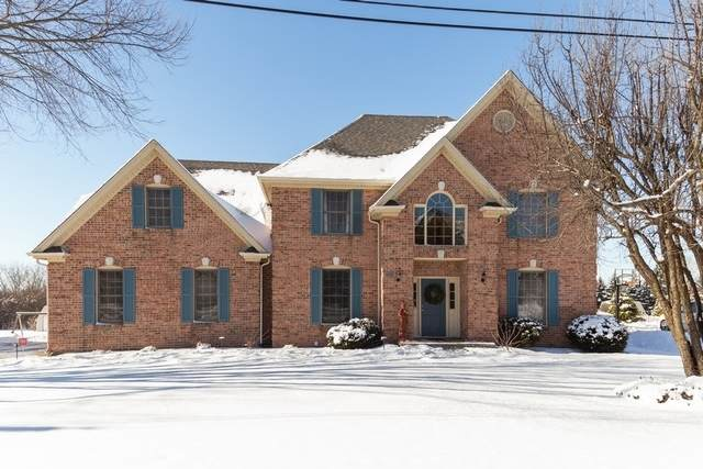 1450 Grant Street, Schaumburg, IL 60193 (MLS #10639478) :: Property Consultants Realty