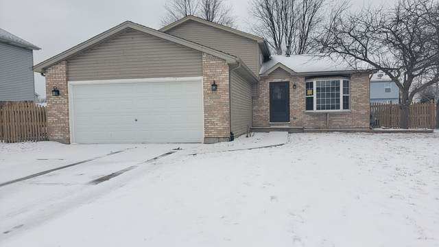 5309 Lindenwood Circle, Plainfield, IL 60586 (MLS #10639791) :: Touchstone Group