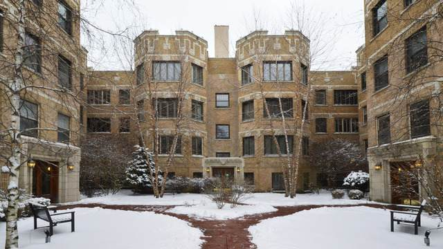 4733 N Paulina Street #3, Chicago, IL 60640 (MLS #10639796) :: Littlefield Group