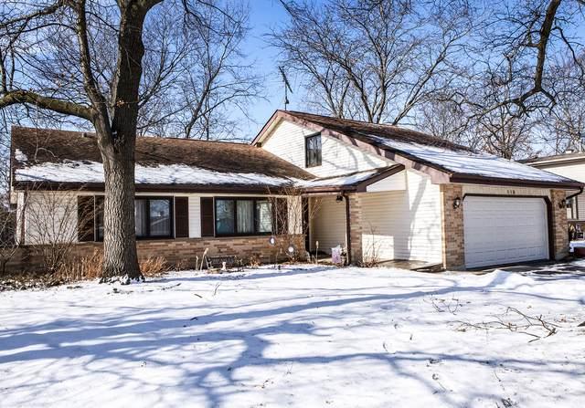110 Timber Lane, Lindenhurst, IL 60046 (MLS #10639821) :: Ryan Dallas Real Estate
