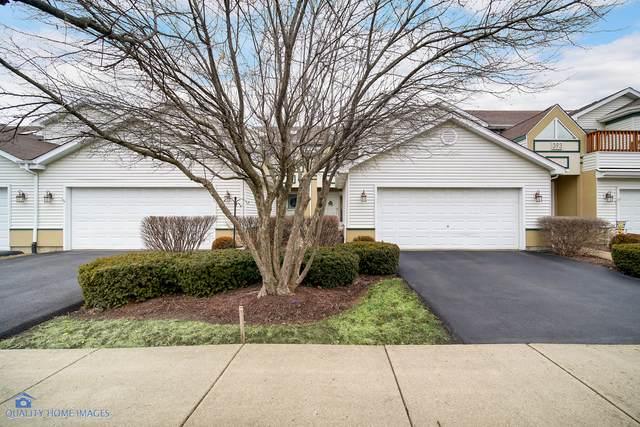 391 Inner Circle Drive, Bolingbrook, IL 60490 (MLS #10639834) :: Ryan Dallas Real Estate
