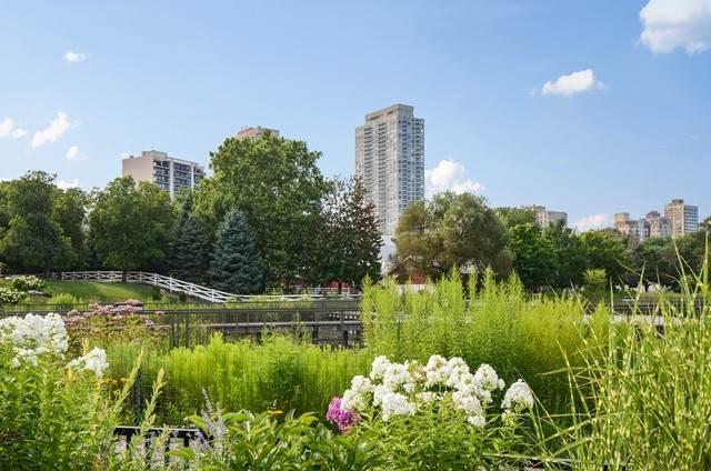 2020 N Lincoln Park West 24H, Chicago, IL 60614 (MLS #10639860) :: Helen Oliveri Real Estate