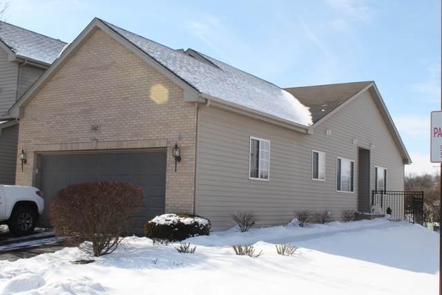 542 Madison Lane, Elgin, IL 60123 (MLS #10639866) :: Helen Oliveri Real Estate