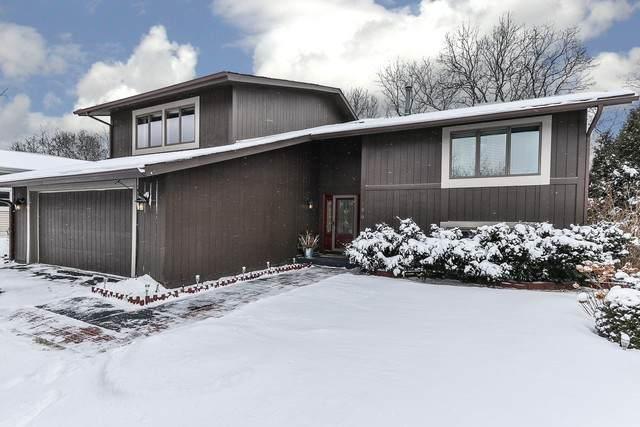 186 Vista Road, Lake Zurich, IL 60047 (MLS #10639967) :: Ryan Dallas Real Estate