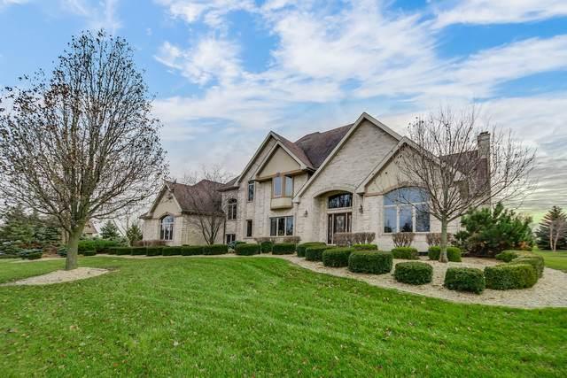 9319 W Stuenkel Road, Frankfort, IL 60423 (MLS #10639973) :: Helen Oliveri Real Estate