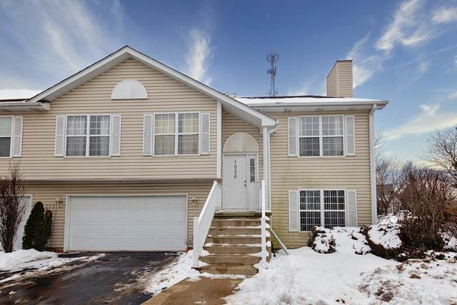 1036 Castleshire Drive, Woodstock, IL 60098 (MLS #10640016) :: The Wexler Group at Keller Williams Preferred Realty