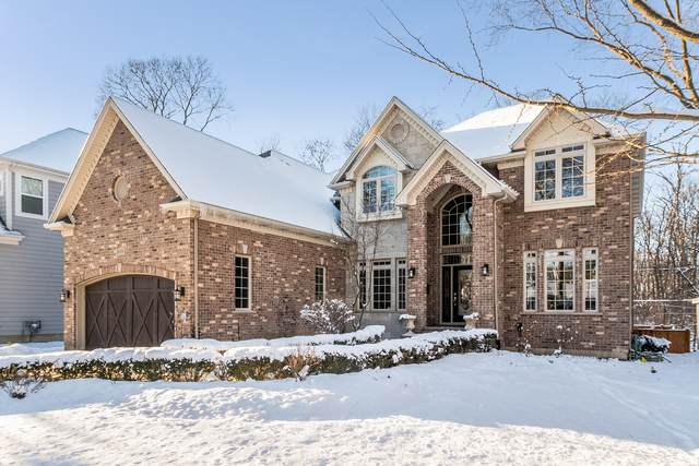 909 Douglas Avenue, Naperville, IL 60540 (MLS #10640024) :: The Wexler Group at Keller Williams Preferred Realty