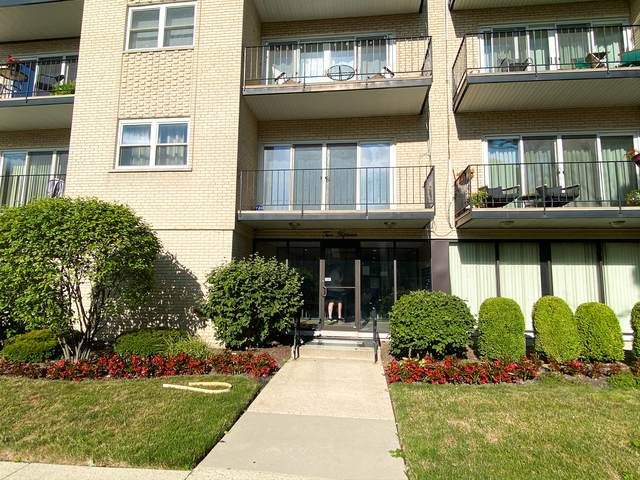 215 Marengo Avenue 4F, Forest Park, IL 60130 (MLS #10640230) :: John Lyons Real Estate
