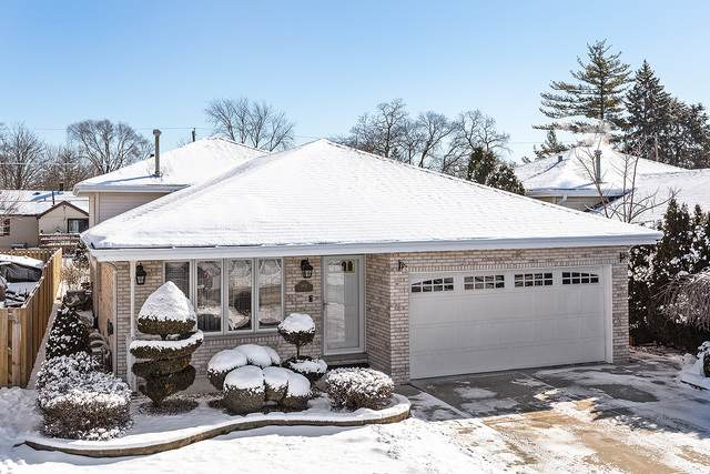9821 Marion Avenue, Oak Lawn, IL 60453 (MLS #10640358) :: The Wexler Group at Keller Williams Preferred Realty