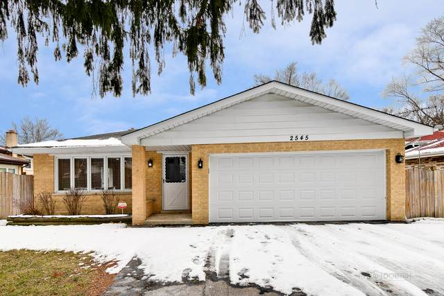2545 E Emerson Street, Des Plaines, IL 60016 (MLS #10640481) :: Property Consultants Realty