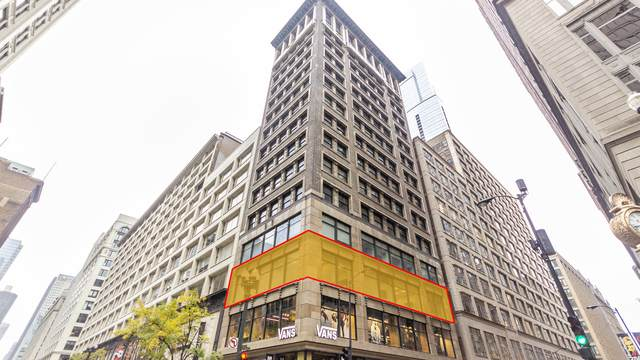 6 E Monroe Street #300, Chicago, IL 60603 (MLS #10640819) :: Property Consultants Realty