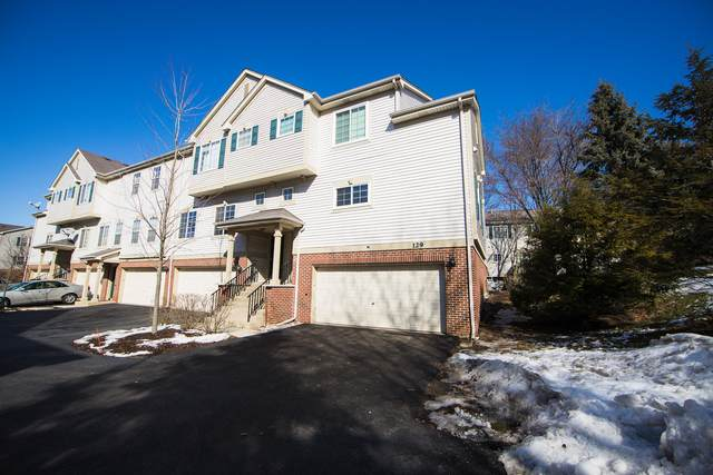 129 Monarch Drive, Streamwood, IL 60107 (MLS #10640920) :: Ani Real Estate