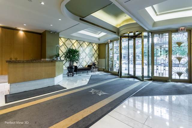 111 E Chestnut Street 23C, Chicago, IL 60611 (MLS #10641087) :: Property Consultants Realty
