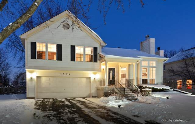 1663 Warrington Lane, Crystal Lake, IL 60014 (MLS #10641241) :: Baz Network | Keller Williams Elite