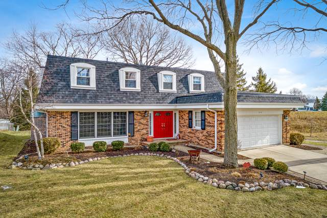 715 Huntington Lane, Schaumburg, IL 60193 (MLS #10641319) :: Property Consultants Realty