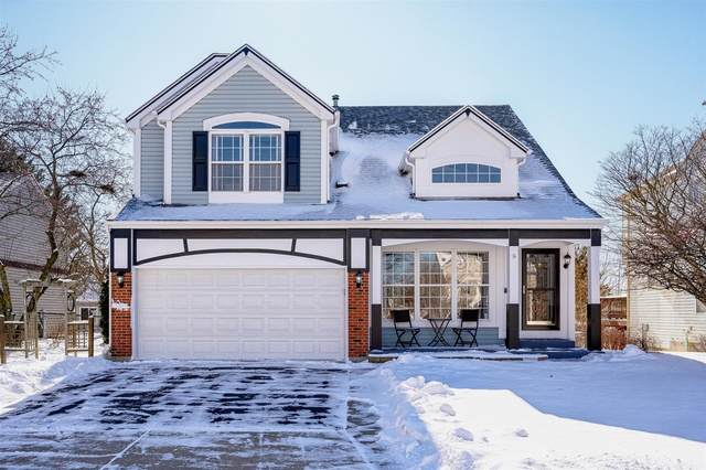 5 Sheffield Court, South Elgin, IL 60177 (MLS #10641363) :: Property Consultants Realty