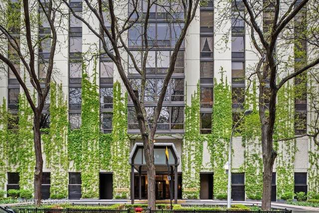 100 E Bellevue Place 11D, Chicago, IL 60611 (MLS #10641473) :: Property Consultants Realty