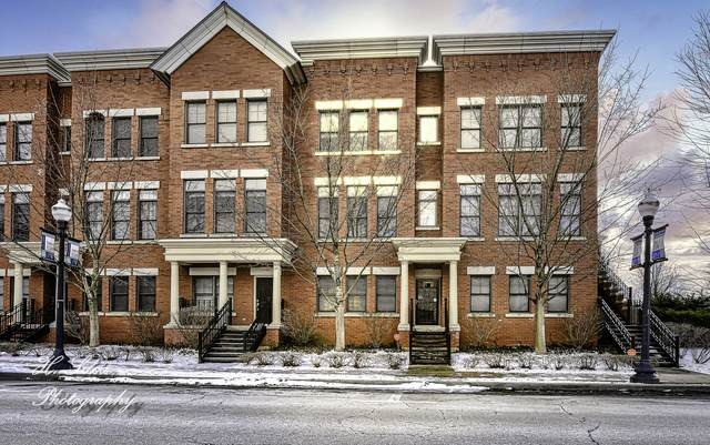 201 Prairie Street, Elgin, IL 60120 (MLS #10641490) :: Property Consultants Realty