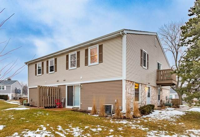 1069 Glouchester Harbor #0, Schaumburg, IL 60193 (MLS #10641571) :: Property Consultants Realty