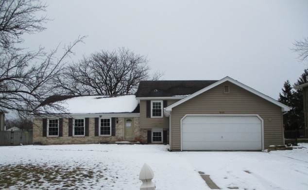 906 Charles Street, Crete, IL 60417 (MLS #10641917) :: Property Consultants Realty