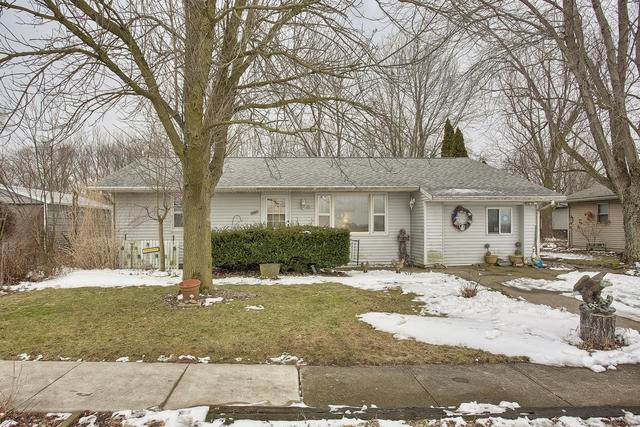 408 E Kyle Street, OGDEN, IL 61859 (MLS #10641978) :: Littlefield Group