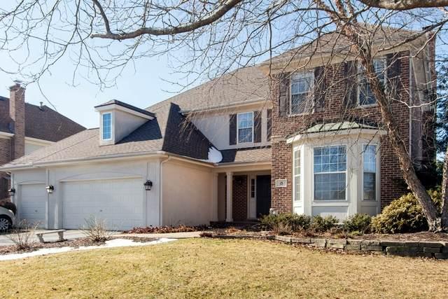 13 S Chestnut Court, Hawthorn Woods, IL 60047 (MLS #10642087) :: John Lyons Real Estate