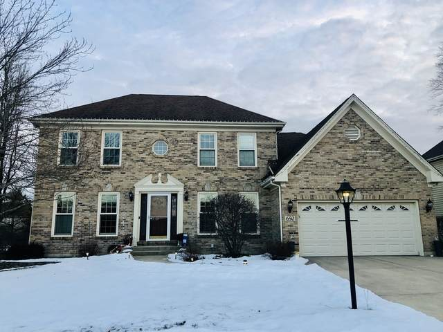 650 Partridge Drive, West Chicago, IL 60185 (MLS #10642132) :: Touchstone Group