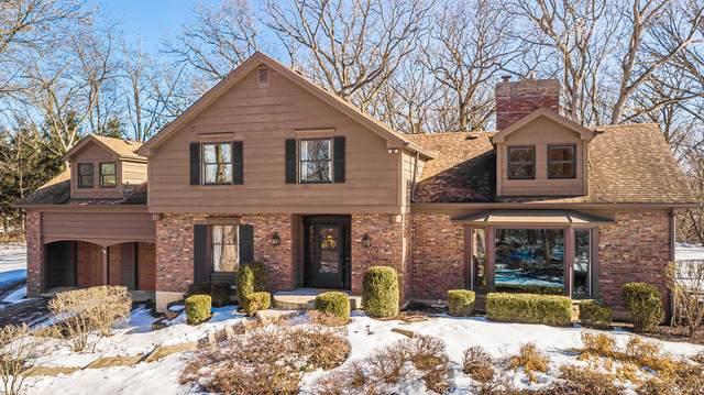 21651 W Boschome Drive, Kildeer, IL 60047 (MLS #10642146) :: Helen Oliveri Real Estate