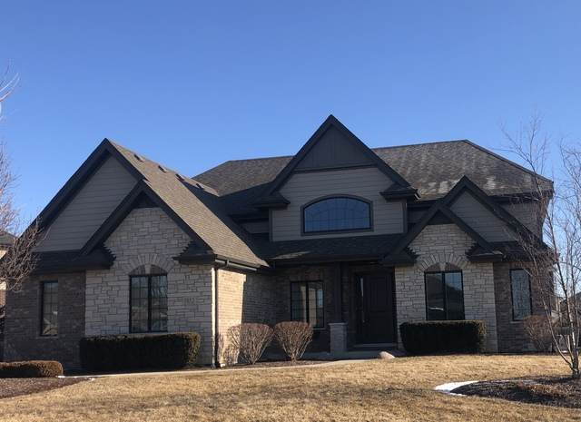 1852 Brogan Drive, New Lenox, IL 60451 (MLS #10642147) :: The Wexler Group at Keller Williams Preferred Realty