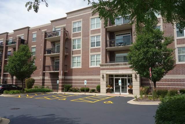 50 S Greeley Street #314, Palatine, IL 60067 (MLS #10642329) :: Century 21 Affiliated