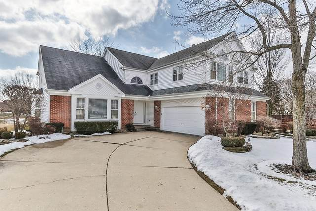 651 Raintree Court, Buffalo Grove, IL 60089 (MLS #10642334) :: Berkshire Hathaway HomeServices Snyder Real Estate