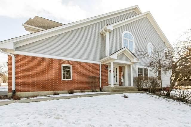 1681 W Ethans Glen Drive, Palatine, IL 60067 (MLS #10642612) :: Century 21 Affiliated