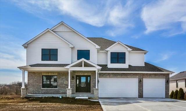 22659 Lilly Pad Lane, Frankfort, IL 60423 (MLS #10642865) :: Century 21 Affiliated