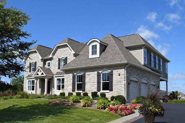 24715 N Blue Aster Lot #50 Lane, Lake Barrington, IL 60010 (MLS #10642966) :: Ani Real Estate