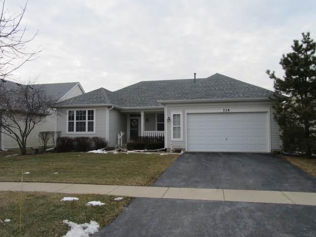 735 Bohannon Circle, Oswego, IL 60543 (MLS #10643100) :: The Dena Furlow Team - Keller Williams Realty